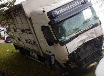 WYpadek Busa i ciężarówki